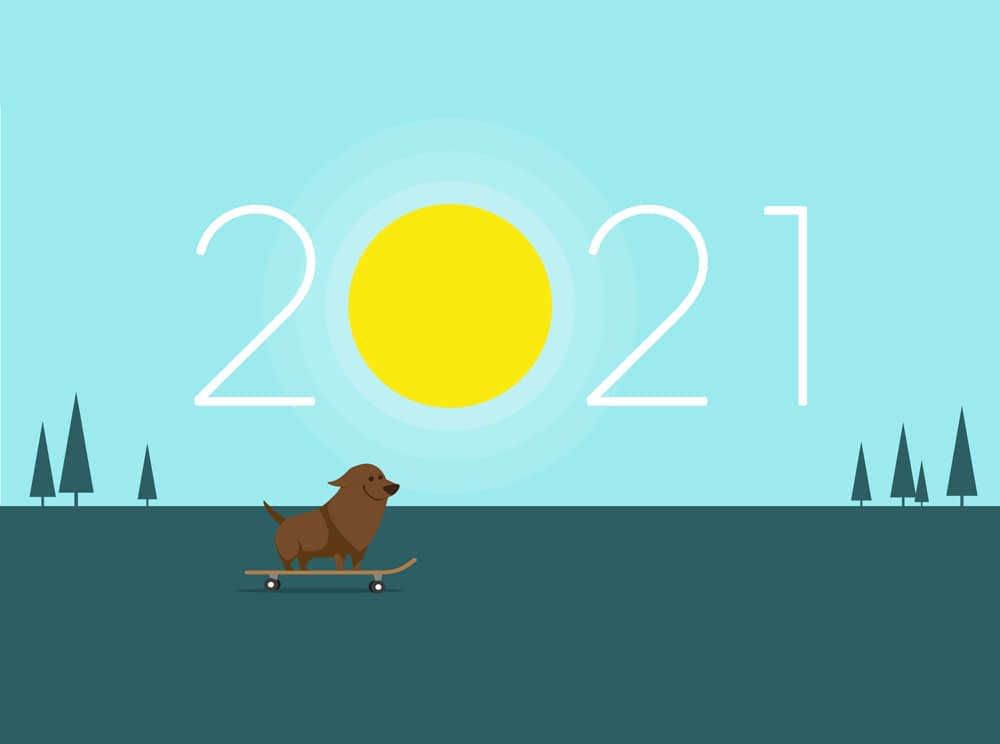 Magnificent Studio Happy New Year 2021